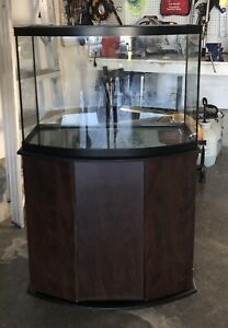 45 Gallon fish tank and stand