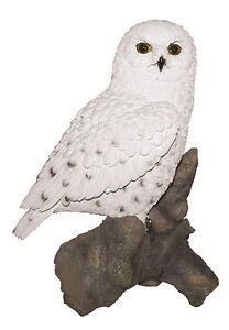 Vivid Arts - REAL LIFE BIRDS - Snowy Owl