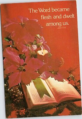 The Word became flesh and dwelt among us - poinsettia with