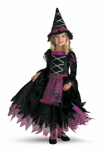 Fairytale Witch Child Toddler Size 3T-4T Girls Halloween Costume Cute