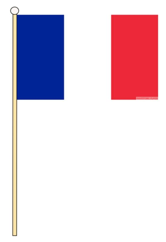 """FRANCE PACK OF 12 EUROPE medium HAND FLAGS 9""""X6"""" 22.5cm x 15cm flag FRENCH"""