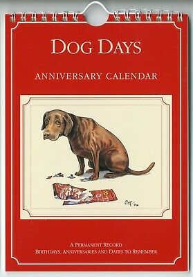 Fun Anniversary Ideas (ANNIVERSARY CALENDAR Fun Homely Dog Cartoons By Artist Bryn Parry Gift)