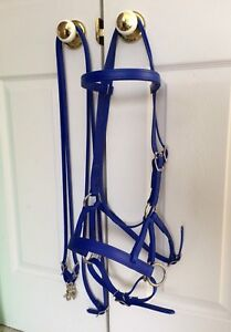Bitless Bridle and reins