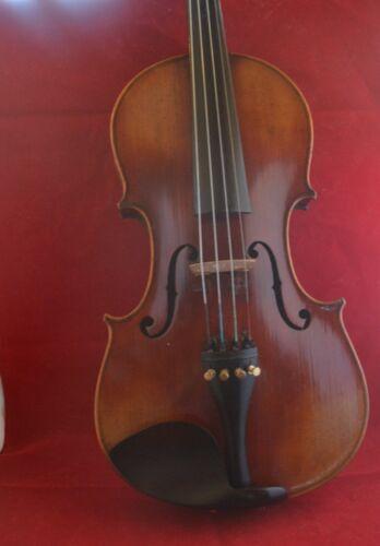 Nicolo Herion Amati Violin