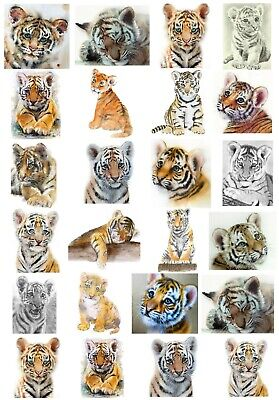 24 Mixed Tigers Large Sticky White Paper Stickers Labels New