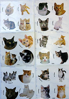 48 Kitty Kitten Cats Dots Stickers Party Favors Teacher Supply Rewards ](Kitty Cat Party Supplies)