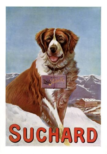 Suchard Chocolate Saint Bernard XL 1909 ad Switzerland mountain advertising dog