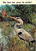 Br30115 Les Plaisirs De La Peche Pelican Birds Oiseaux -  - ebay.co.uk