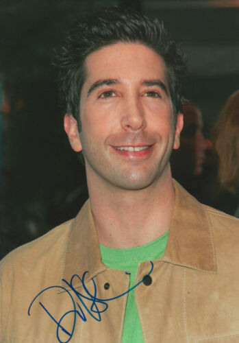 "David Schwimmer ""Friends"" Autogramm signed 20x30 cm Bild"