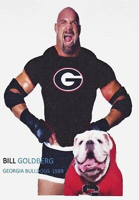 BILL GOLDBERG GEORGIA BULLDOGS ACEO ART CARD ##FREE COMBINED SHIPPING##