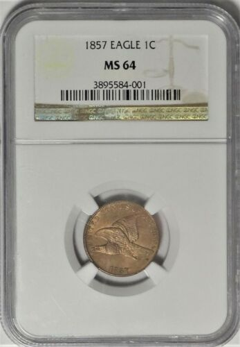 1857 1c NGC MS 64 Near Gem Uncirculated UNC Flying Eagle Cent Type Coin