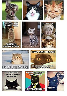 CAT HUMOUR QUOTES FUNNY NOVELTY 11 DIFFERENT FRIDGE MAGNETS FLEXIBLE THIN  XMAS
