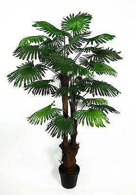 Fächerpalme 180cm ZJ künstliche Palmen Pflanzen Kunstpalmen Dekopalme