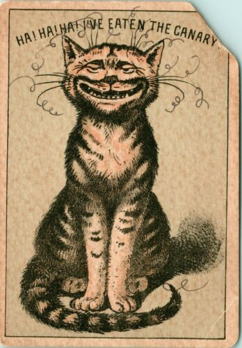Grinning Cat Curly Wiskers Ate Canary Teeth Atlantic Pacific Tea Companys - A19