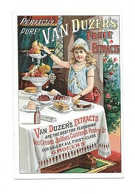 Vintage Trade Card VAN DUZERS FRUIT EXTRACTS gir at dessert table large card