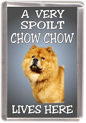 "Chow Chow (Red) No 2 Fridge Magnet ""A VERY SPOILT .... LIVES HERE"" by Starprint"