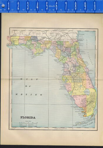 FLORIDA, United States - 1895 Color Country Map