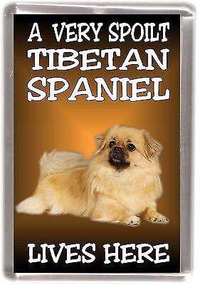 "Tibetan Spaniel Dog Fridge Magnet ""A VERY SPOILT ... LIVES HERE"" by Starprint"