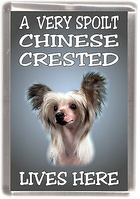 """Chinese Crested Fridge Magnet """"A VERY SPOILT .... LIVES HERE"""" by Starprint"""