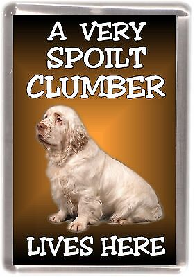 "Clumber Spaniel Fridge Magnet ""A VERY SPOILT .... LIVES HERE"" by Starprint"