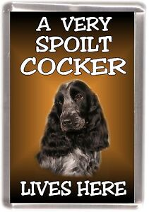 Cocker Spaniel No 2 Fridge Magnet