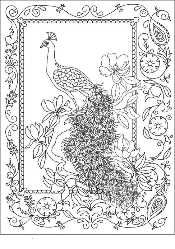 "Rug Hooking Pattern ""ROYAL PEACOCK""  on natural linen"