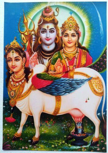 Old Unique Vintage Paper Laminated Poster Shiv Parvati Deity Cow Kamdhenu  12x17