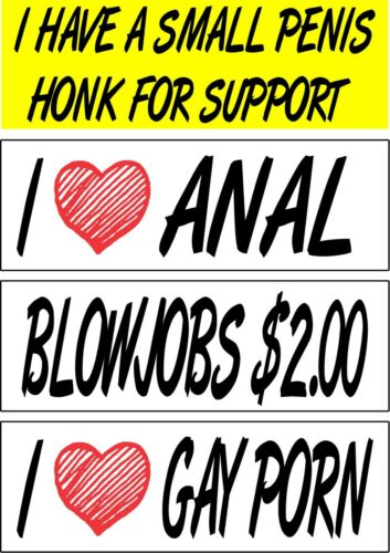 Set of 4 prank magnetic bumper stickers magnets funny hilarious I love gay porn