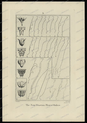 Druck-Stahlstich-Engraving-J.Ruskin-R.P.Cuff-The Four Venetian Flower-Order-80