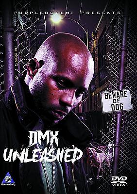DMX 38 MUSIC VIDEOS HIP HOP RAP DVD RUFF RYDERS JAY Z ICE CUBE AALIYAH NAS SISQO