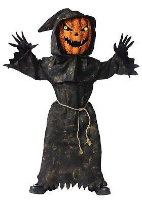 Halloween BOBBLE EYES PUMPKIN HEAD 4 Piece Child L 12-14 Costume Hood Robe Belt