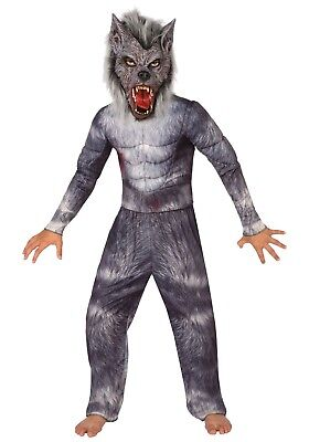 Boys Werewolf Mask (BOYS WEREWOLF MONSTER MUSCLE COSTUME & MASK)