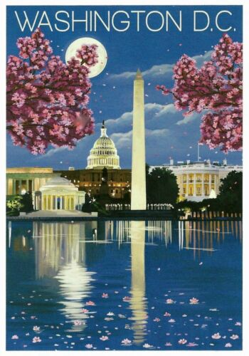 MAGNET  TRAVEL Photo Magnet  WASHINGTON DC Cherry Blossoms