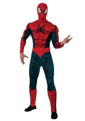 Spider Man Muscle Costume (Marvel Spider-Man - Adult Spiderman Muscle Costume)