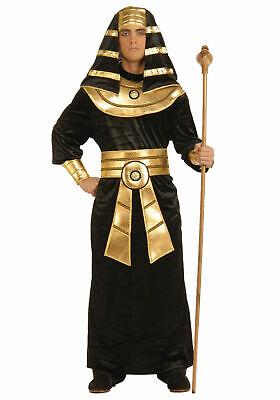 Egyptian Pharaoh - Adult Costume