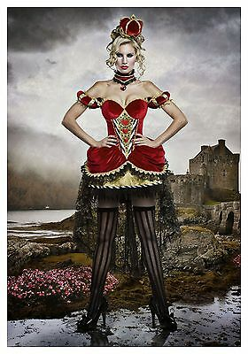 USED DELUXE QUEEN OF HEARTS COSTUME  SIZE MEDIUM (with defect) - Red Queen Dress