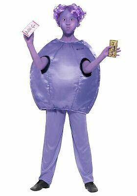Willy Wonka Kids Violet Beauregarde Costume