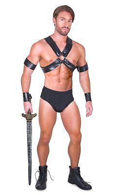 Gladiator Costumes Men (Men's Sexy Gladiator Costume)