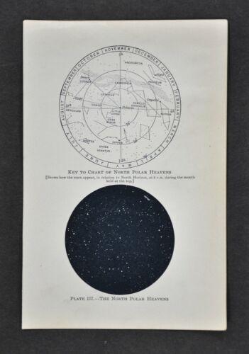 1897 Star Map North Polar Hemisphere Sky Chart Polaris Astronomy Telescope