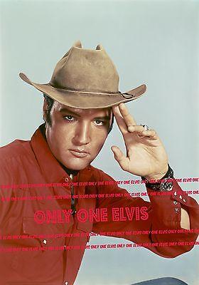 """ELVIS PRESLEY in the Movies 1967 8x10 Photo """"STAY AWAY JOE"""" in COWBOY HAT 01"""