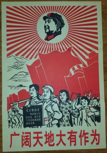 Down+to+the+Countryside+Movement+Poster%2C+1970%2C+Political+Propaga%2COriginal