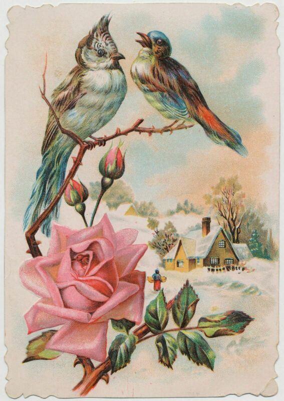 Birds, Rose - Lion Coffee - Victorian Trade Card