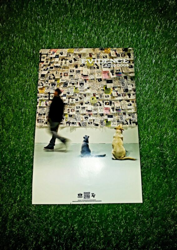 Evidence Cats & Dogs Poster