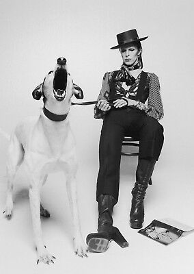 Vintage David Bowie BOX CANVAS Art Print Black & White - All Sizes Canvas Art Print Box