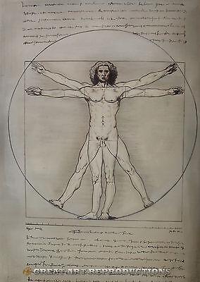 """Vitruvain Man"" Leonardo da Vinci, Reproduction in Oil, 36""x26"""