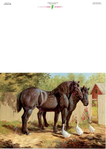 """""""Percherons and Ducks"""" Card by Hildred Goodwine (pack of 10)"""