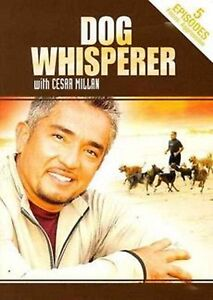 DOG WHISPERER Cesar Millan AGGRESSION (DVD) canine training rehab milan dogs NEW
