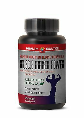 Muscle Supplements   Muscle Maker Power  Deer Antler Velvet Extract 1 Bottle