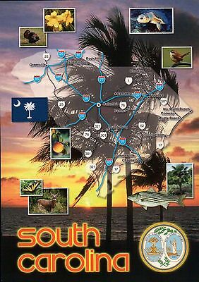 South Carolina, The Palmetto State, Charleston, Myrtle Beach etc. - Map Postcard