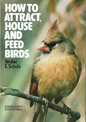 How to Attract House and Feed Birds Plans for Bird Feeders Shelters Bird Watchin